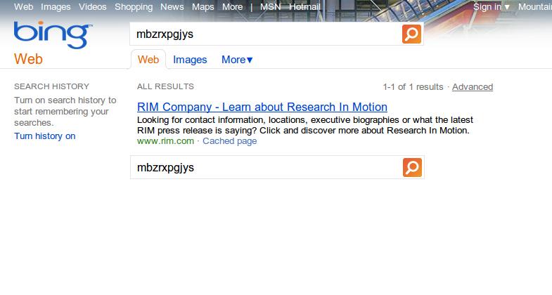Bing Screenshot