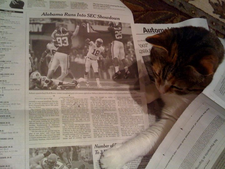 Emmy reads the sport section
