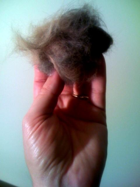 A big hairball avoided