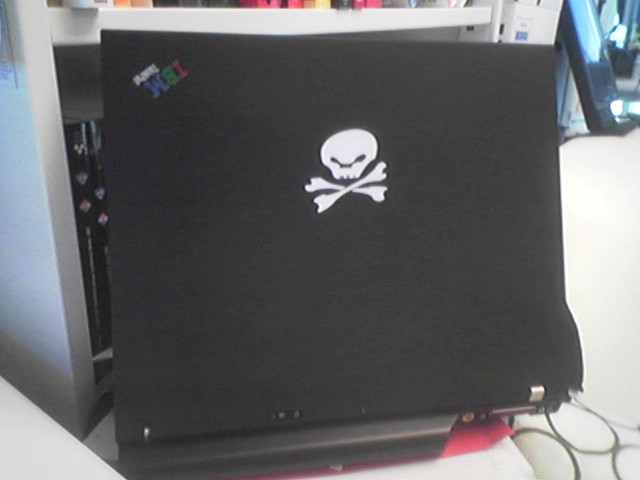 Skull and bones on a laptop