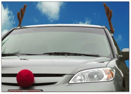 Reindeer car antlers